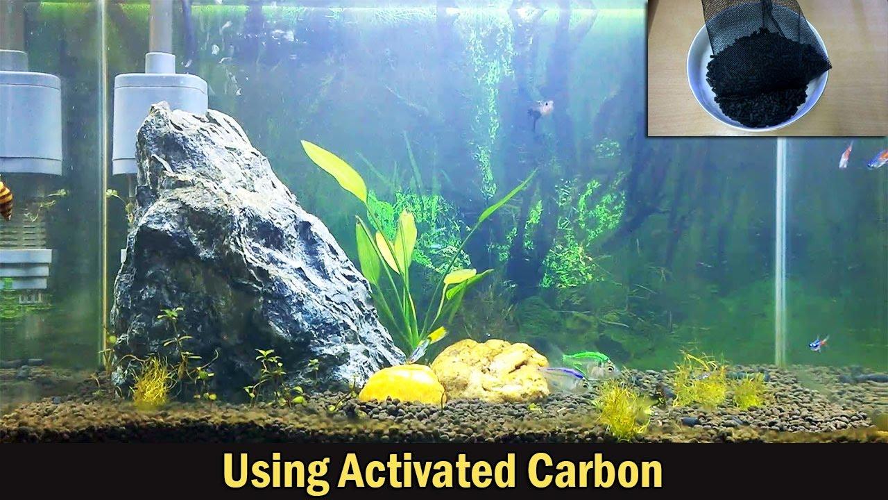 Superieur Using Activated Carbon In Aquariums