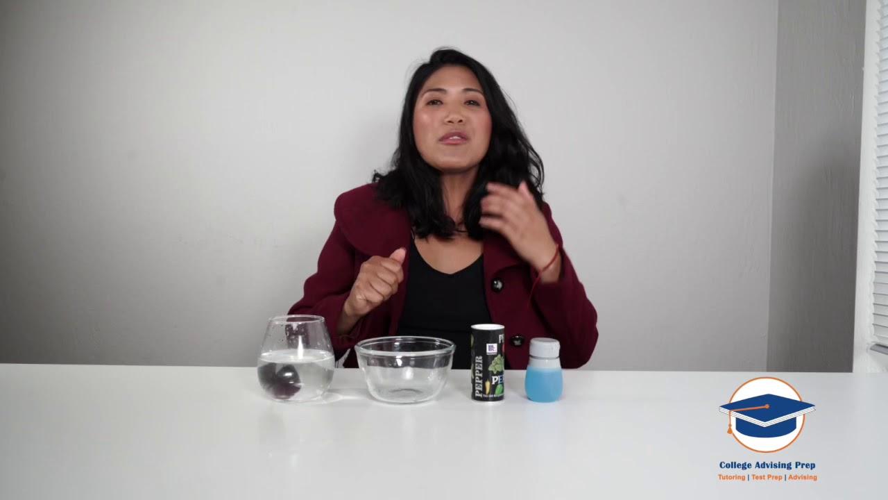 Germ Experiment