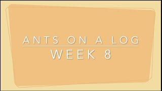 Week 8 Snack - Ants on a Log