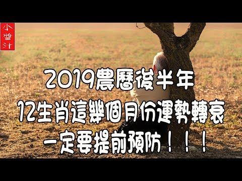 【2019 農曆後半年】警惕!警惕!警惕!12生肖兇月來襲!想要平安度過後半年,一定要提早預防!