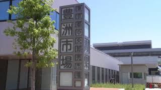 豊洲市場 随意契約協議の会社が指名停止処分