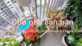 Khám phá căn hộ chung cư Vinhomes Ocean Park | Chủ nhà cần bán