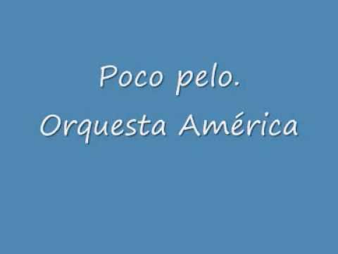 poco pelo- orquesta américa