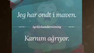 Dansk-Tyrkisk 14
