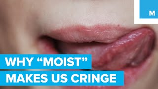 """Why the Word """"Moist"""" Makes People Cringe - Sharp Science"""