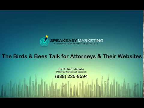 The Birds And Bees Talk for Attorneys And Their Websites | (888) 225-8594