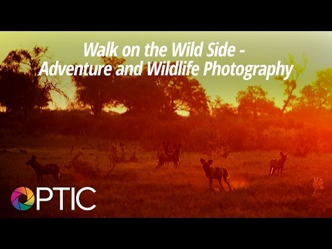 Optic 2016: Walk on the Wild Side - Adventure and Wildlife Photography with Ron Magill