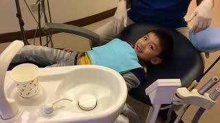 Aston看牙醫