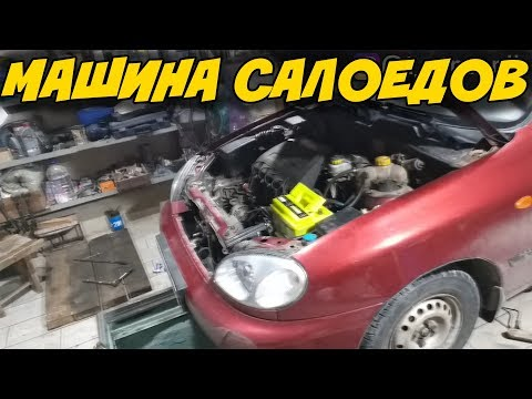 Самые частые проблемы ЛАНОС, SENS и ТАВРИИ / T-Strannik