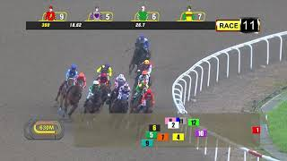 Vidéo de la course PMU BETTER THAN EVER 2010 STAKES