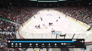 NHL® 15 my submission for top play for December Thumbnail