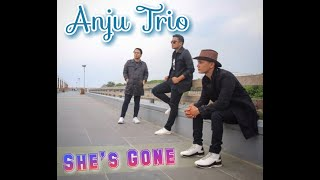 She's Gone Live By Anju Trio