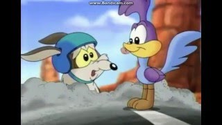 Oh My Daring Coyote (A Song from Baby Looney Tunes)