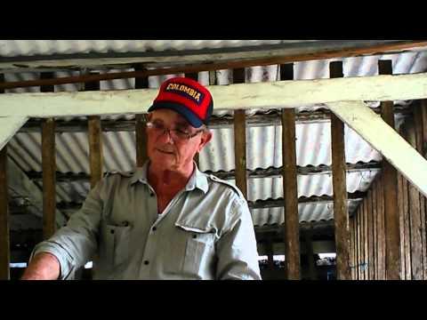 THE VICTORIA COFFE COMPANY ||| SIERRA NEVADA DE SANTA MARTA, COLOMBIA