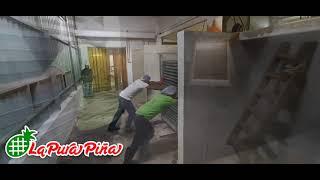 Horneado de la Piña, Proceso de Deshidratación de la Piña en Juan Rodríguez Clara, Veracruz...