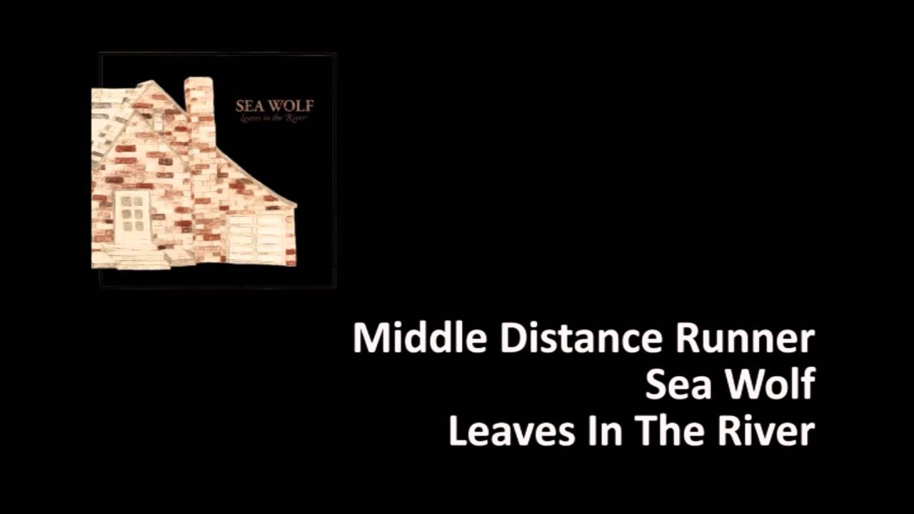 sea-wolf-middle-distance-runner-david-hiromi-van-der-goes