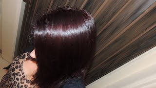 Review and Demo of Schwarzkopf Color Ultime hair color in 4.2 Mahogany Red/ Using box dye over henna