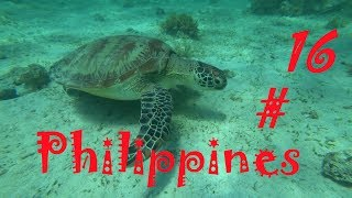 Philippines 16 Подводный МИР Филиппин Порт Бартон Рыбалка на водопаде