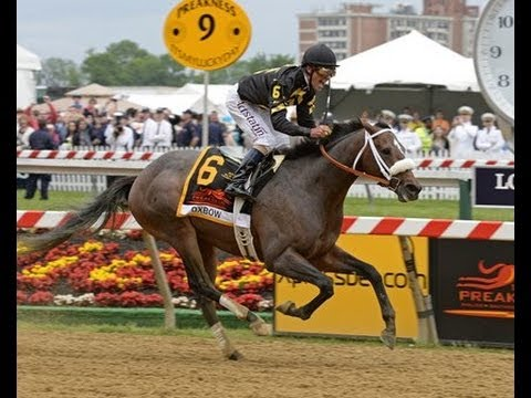 2013 Preakness Stakes - Oxbow