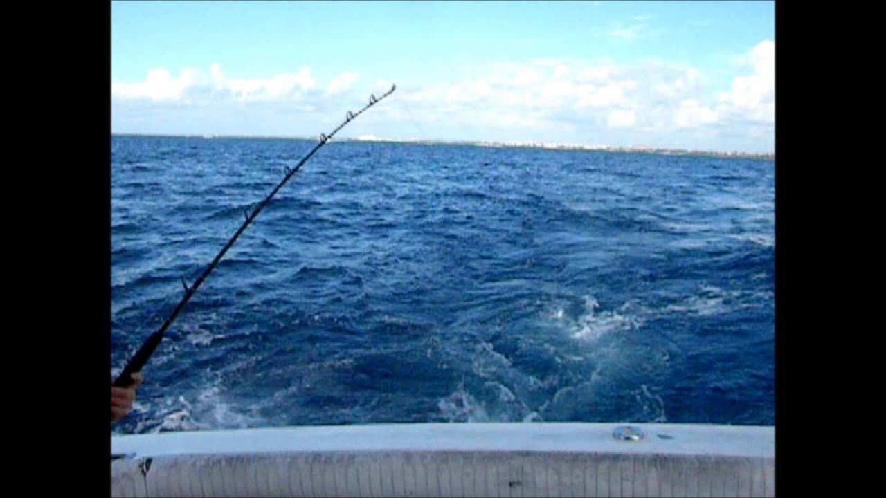 Deep sea fishing trip in cancun mexico vacation youtube for Deep sea fishing cancun