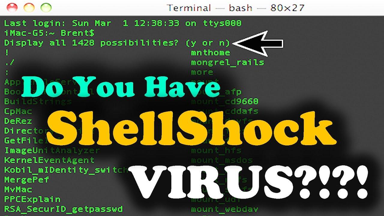 ShellShock: How do I know if I have Bash Bug - Virus