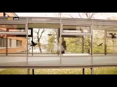 Crystal Meth Die Horror Droge Doku 2015 NEU in HD