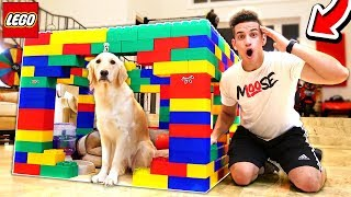 BUILDING MOOSECRAFT'S PUPPY A LEGO MANSION!