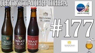Дегустация пива #177 - три сорта бельгийского пива от Brouwerij Boelens! Часть 2. 18+(, 2018-01-26T10:51:25.000Z)