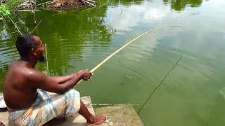 Best Live Fishing Video (Part-86)