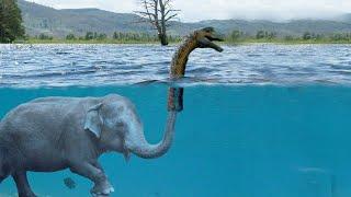 A prova que o monstro do lago Ness existe.