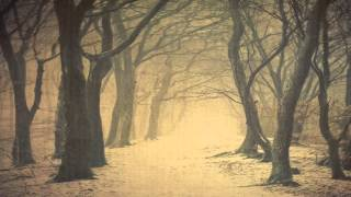 Bosques de mi mente: La calle solitaria