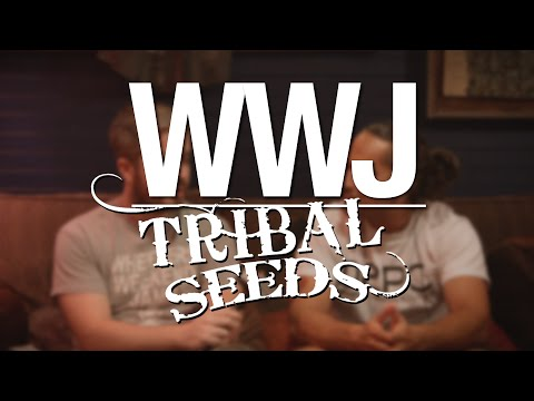 Tribal Seeds Interviewed by Wheelers Weekend Jams LIVE AND DIRECT