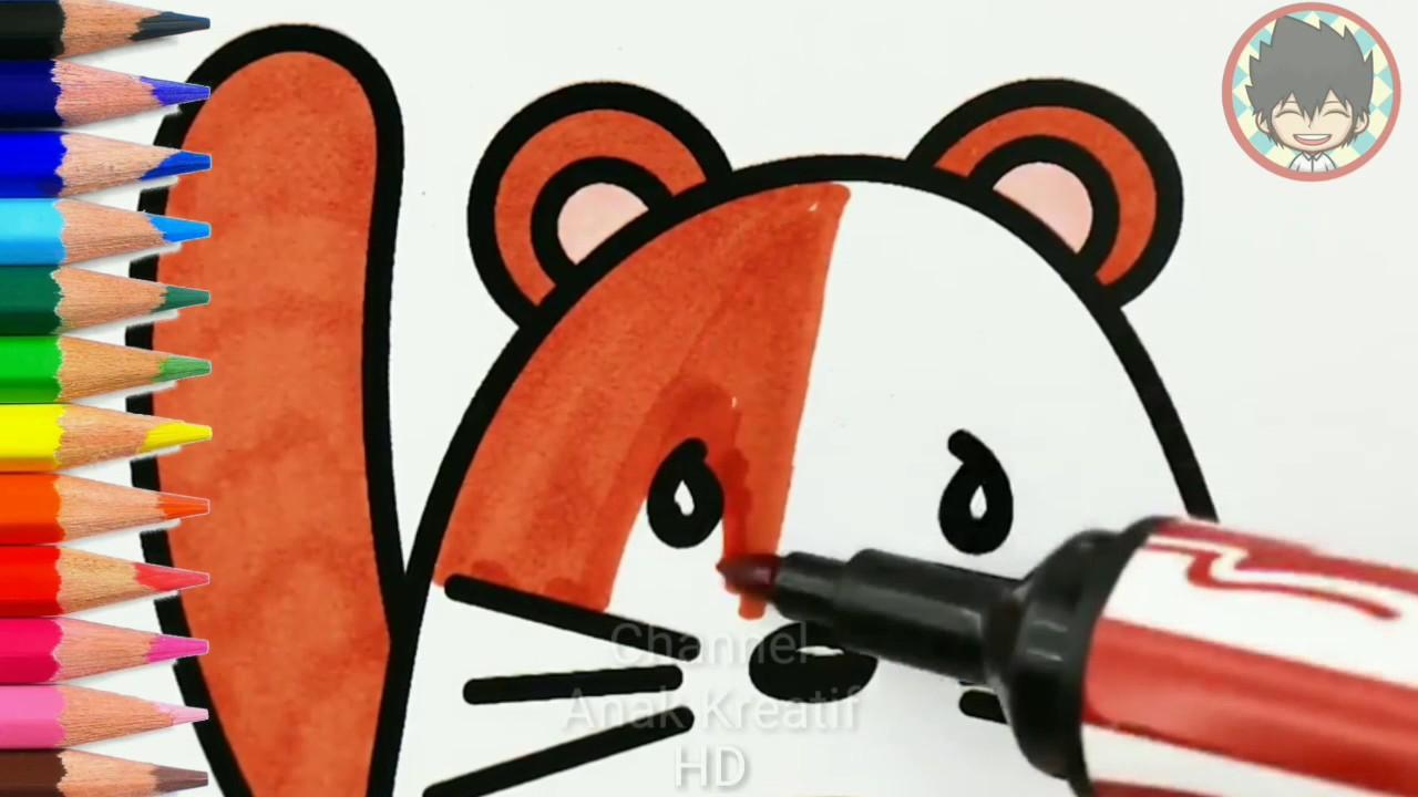 Menggambar Dan Belajar Mewarnai Hewan Hamster