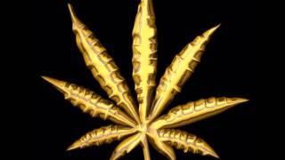 La vida Narcotica (Dubstyle Remix) - Blazeproductionss