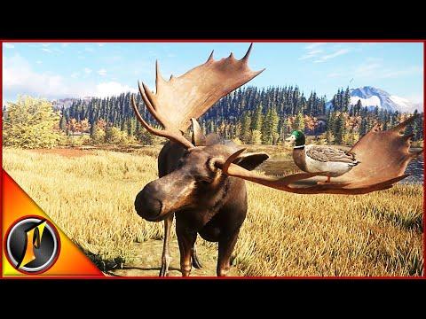 Moose Hunt with a Little Diamond Surprise!
