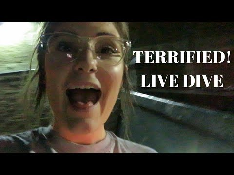 A VERY PARANOID LIVE DIVE + A RANT