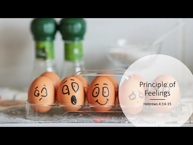 The Principle of Feelings · 201129 Sunday PM · Pastor Jerome Pittman