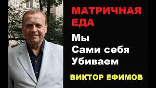 Матричная еда  Мы сами себя убиваем  Виктор Ефимов.Познавательное видео
