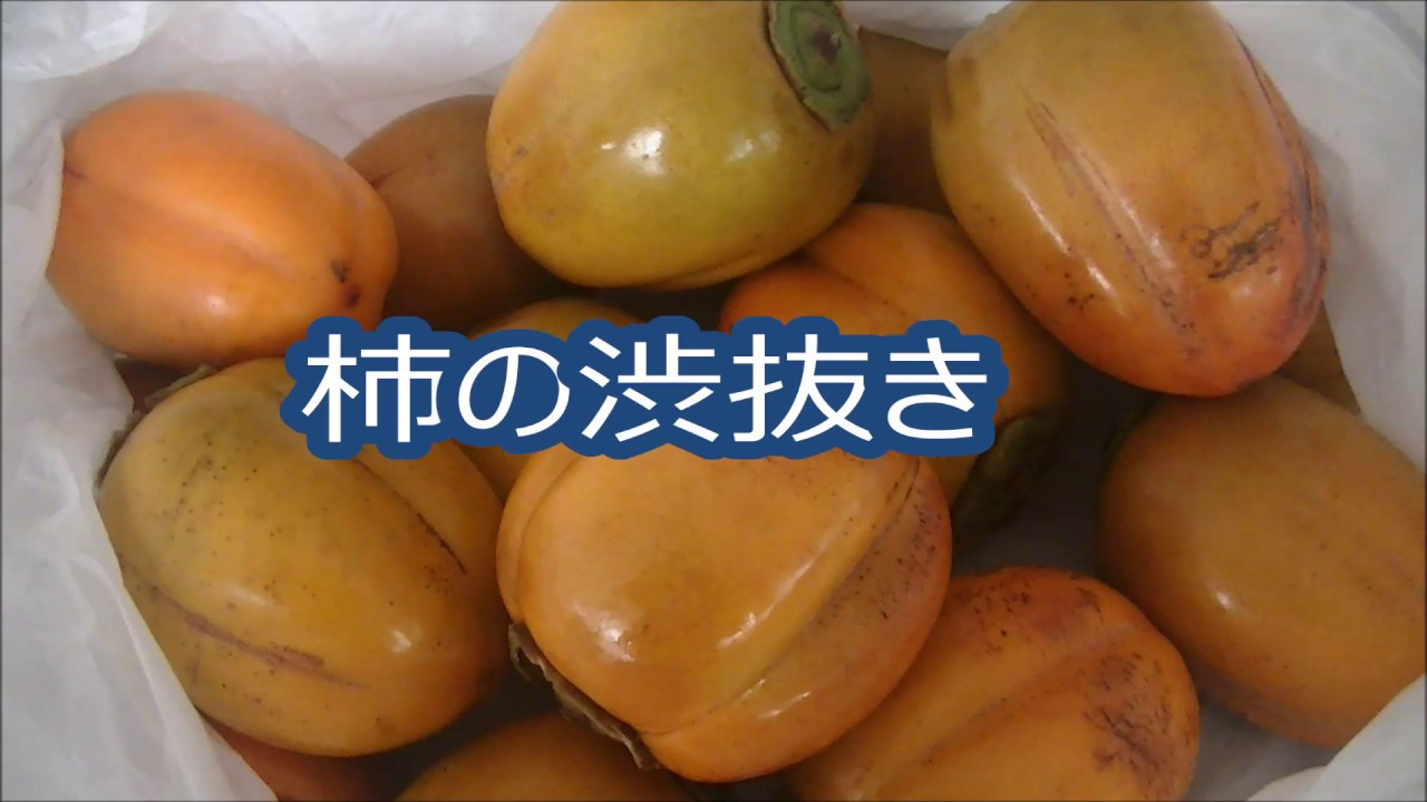 焼酎 渋柿