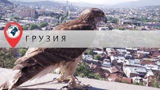 В отпуск в Грузию. Часть 1. Две столицы: Тбилиси и Мцхета(В этом видео я покажу вам Тбилиси. Мы поднимимся на Нарикалу, чтобы обозреть с высоты птичьего полёта весь..., 2016-06-05T13:03:38.000Z)