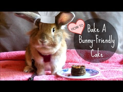 Baking a SAFE Cake for Eponines 1st Birthday YouTube