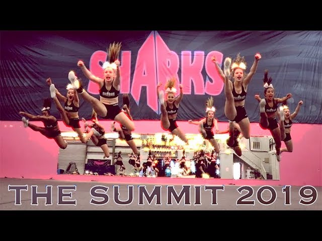 Savannah Sharks Summit 2019