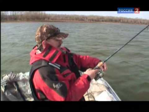 рыбалка ловля толстолобика на удочку видео