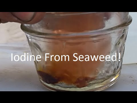 Extracting Iodine From Seaweed