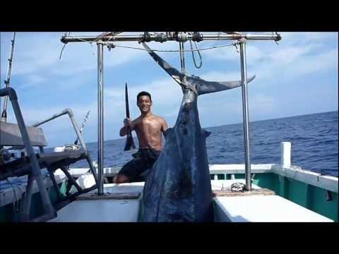 沖縄カジキマグロ238kg3時間死闘トローリング2011年9/7釣り船クレーンズ