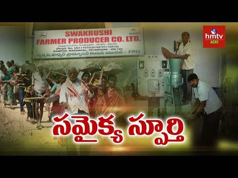 Swakrushi Farmers Producer Company Ltd Success Story | hmtv Agri