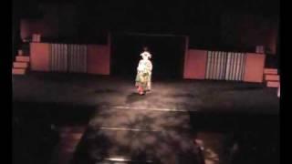 幕末の京都を舞台にした、女達の物語 オープニング 2006年10月18日~22日 東京芸術劇場小ホール1 http://shibaien.sakura.ne.jp/home/ あらすじ ...