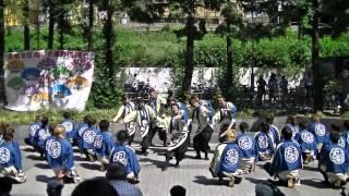 福井大学よっしゃこい2013年度演舞 曲名 夢光咲 (むこうへ) 第14回こ...