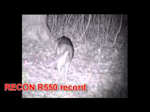 Hunting with recon 550r pulsar. flv youtube