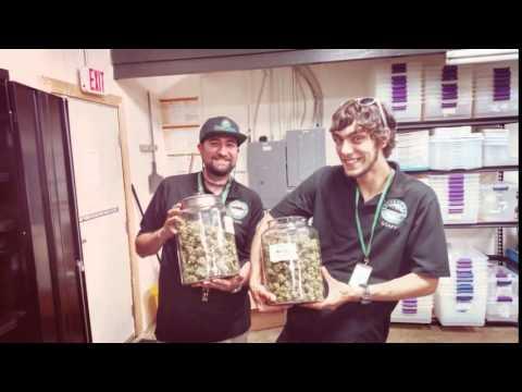 Greenside Visits Avitas Agriculture!